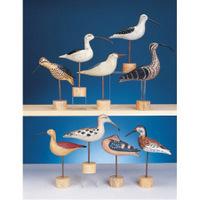FRONT-SHORE-BIRDS